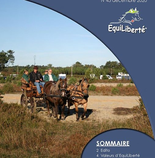 Equil Info N°43 Decembre 2020
